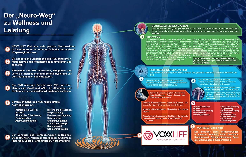 VOXXLife HPT 1